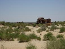 Muynak - Aralsee, oder das was einmal war.