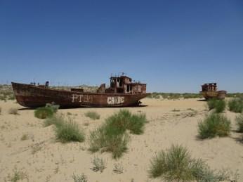 Schiffswracks bei Muynak