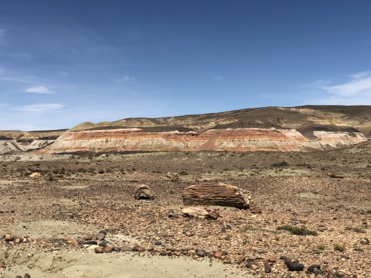 Sarmiento - Bosque petrificado, versteinerter Wald