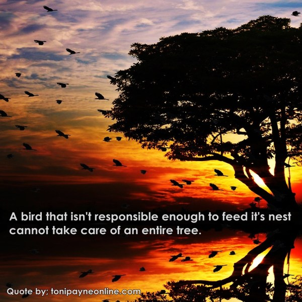 Quote about Responsibility bird