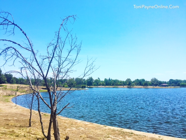 Lake Balboa is one of the most serene places to visit in the Valley