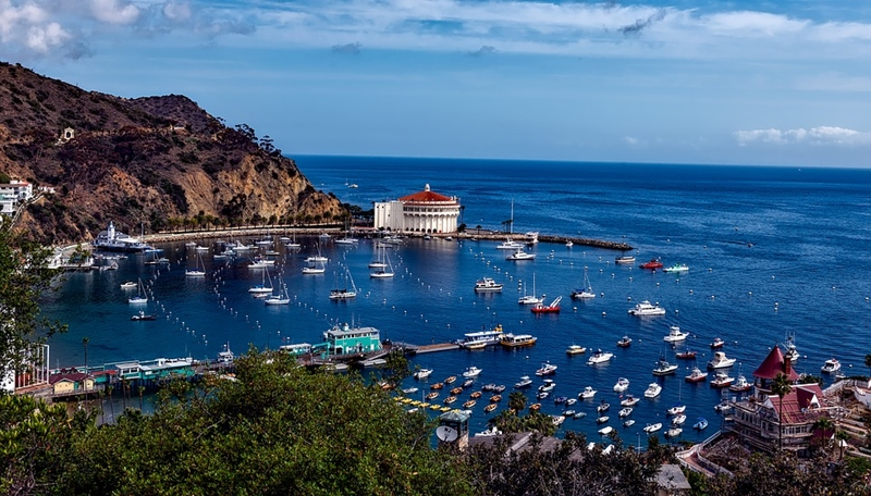 awesome-vacation-wedding-proposal-ideas-catalina