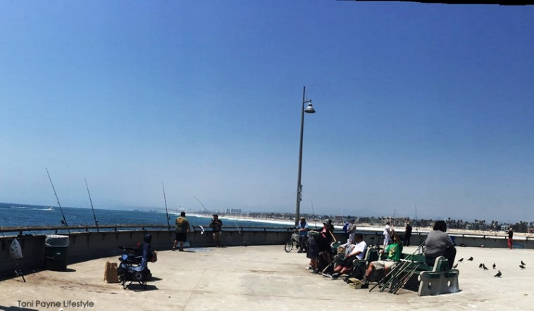 things-to-do-at-venice-beach-fishing