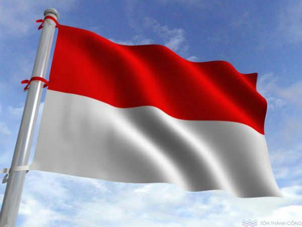 Xuất xứ Indonesia - Tấm lấy sáng polycarbonate đặc ruột, rỗng ruột, tôn sáng