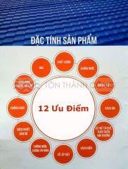 Giới Thiệu Ngói Nhựa Tổng Hợp PVC ASA – Trang 2
