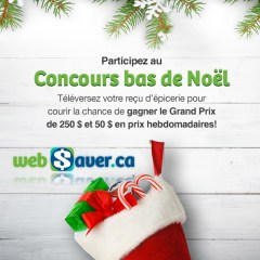 websaver-concours3