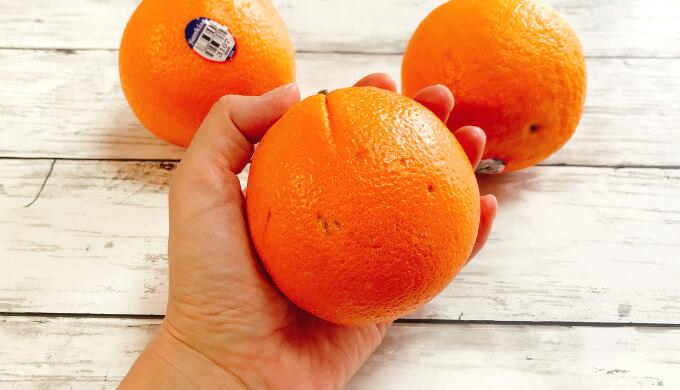サンキストオレンジ(サイズ)