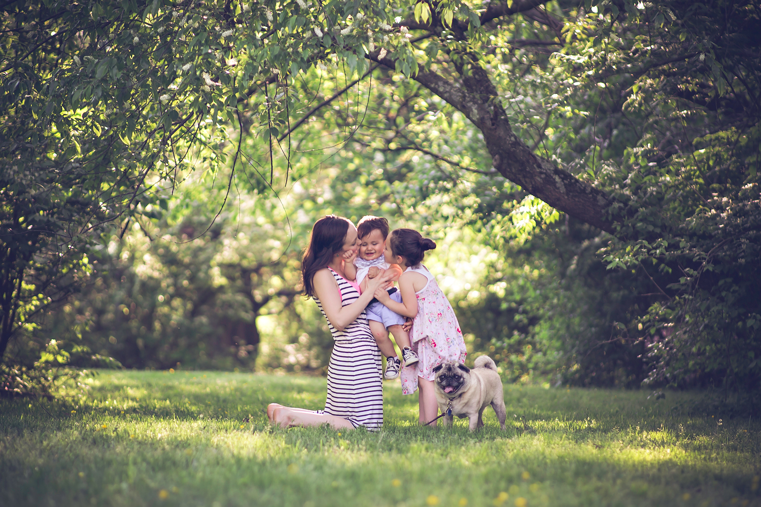 family and baby with pet pug dog   Tonya Teran Photography - Rockville, MD Newborn Baby and Family Photography