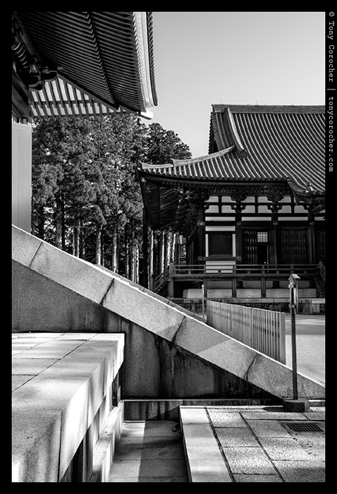 Danjogaran Koyasan  - KONGOBUJI(金剛峰寺) 2013 © Tony Corocher | All Rights Reserved | Do not use anywhere without written authorization