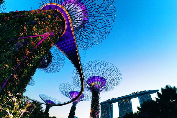 Study in Singapore เรียนต่อ สิงคโปร์