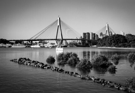 Anzac Bridge from Rozelle Bay