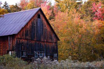 Vermont (5 of 7)