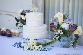 Quail Hollow Ranch wedding (9 of 30)