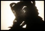 Shadow Bear!