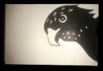 Hawk of Darkness
