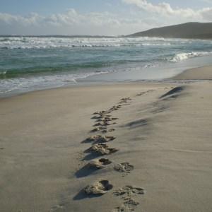 Beach with footprints
