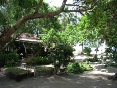 This was the view I woke up to every morning on Koh Phangan. Liberty Bungalows, right on the Baan Tai beach. Paradise!