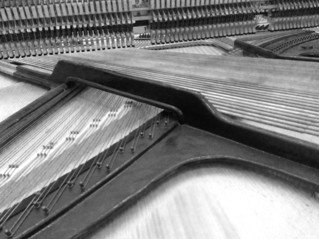 Photo_2_the_harp_of _the_piano