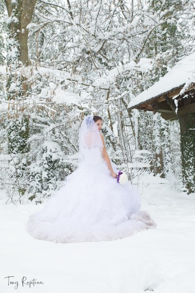 bride with the snow