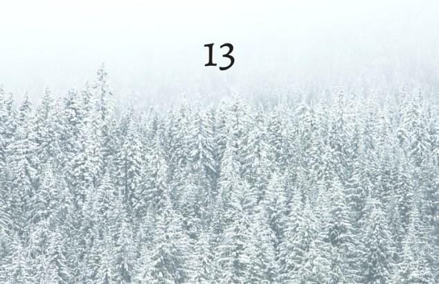 year 13