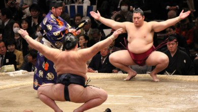 Photo of Do you know what is Sumo Wrestling?