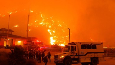 Photo of Malibu fire: Miley Cyrus, Neil Young lose homes