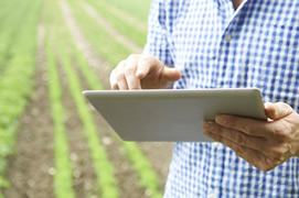 Software agro en el campo