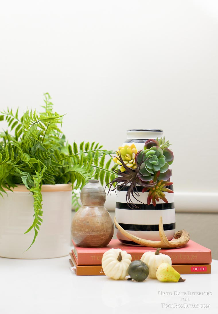 bright styled shot with pumpkins, antlers, fern, and succulents