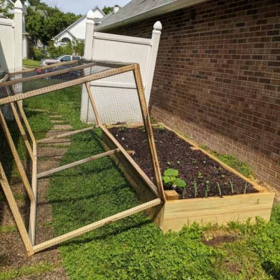 DIY-Raised-Bed-Garden-with-Cover-by-@Toolboxdivas-23-of-42
