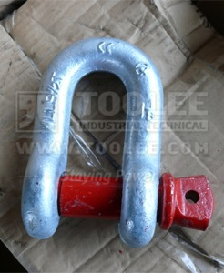 300 1102 Chain Shackle With Screw Collar Pin US SPEC 6 1