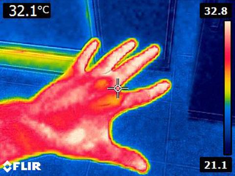 Flir E4 Before Mod MSX Thermal Image of Hand