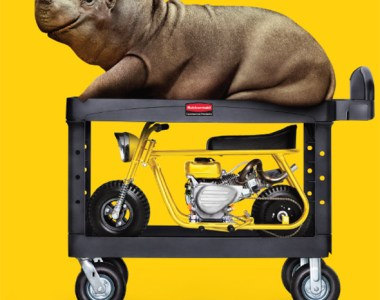 Hippo on a Rubbermaid Utility Cart