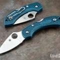 Spyderco Dragonfly K390 Bluee Handle KnivesShipFree