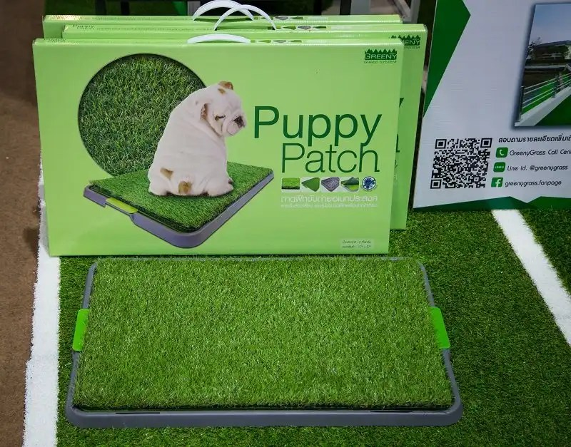 Benefits of Using an indoor dog potty