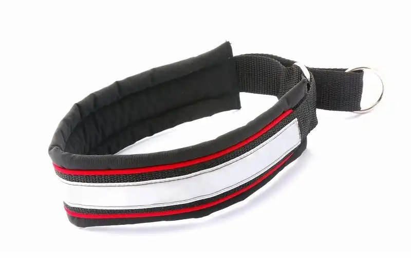 Reflective collars for cats