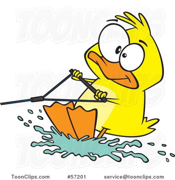 Cartoon Duck Water Skiing 57201 By Ron Leishman