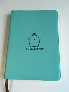 Mint Green Molang Diary