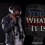 GH EXCLUSIVE: Sarkodie and EL- k3ts3(skillz)