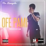 Mr. Renegade – Ofe Pami