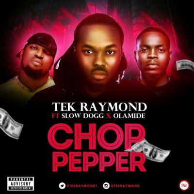 Tek Raymond - Chop Pepper ft Slow Dogg & Olamide [ART]