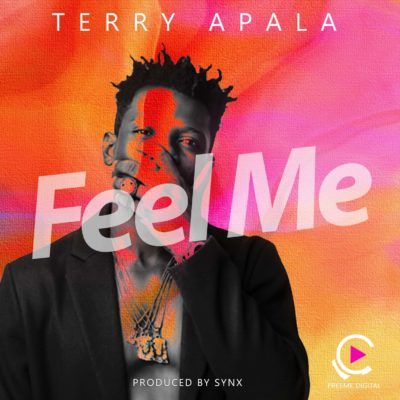 Music: Terry Apala – Feel Me [New Song]