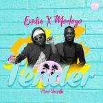 Endia – Tender ft. Moelogo [New Song]