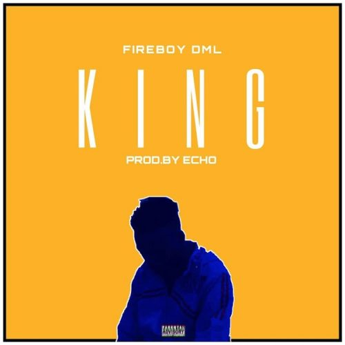 "[Lyrics] Fireboy DML – ""King"""