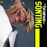 [Music] Brainee – Sonting
