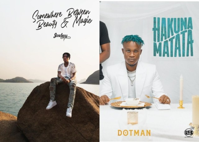 Check Out The List Of Major Projects That Would Drop This February, Anticipate! 1