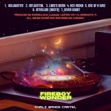 """[Mp3 Zip] Fireboy Wonder – """"MOROUNFOLA NEVER DOUBT"""" LP"""