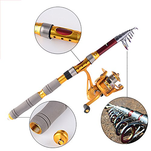 Balight Fishing Rod Portable Travel Carbon Telescopic Fishing Rod Kits (Golden, 2.1m/6.88ft+AF2000)