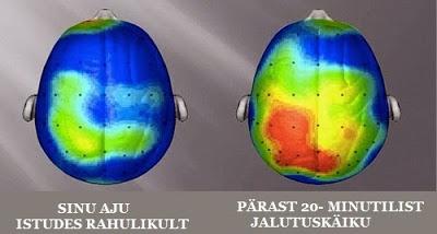 aju aktiivsus