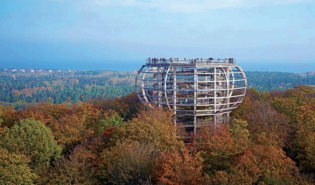 """Die Aussichtsplattform """"Adlerhorst"""" bietet einen tollen Ausblick über den bunten Herbstwald. - Foto: Naturerbe Zentrum Rügen"""