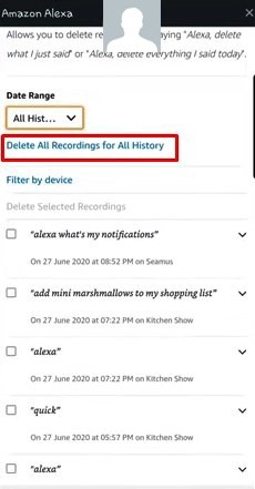 alexa history, How to review and delete Alexa History?, Top10.Digital